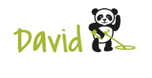 Blog David Detection